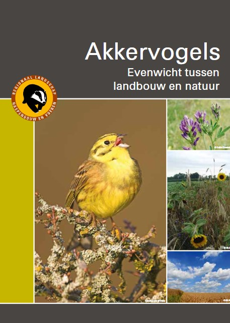 Akkervogels in Haspengouw